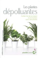 Netcomete plantes d polluantes - Les plantes depolluantes purifier l air de la maison ...